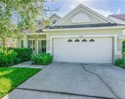 15946 Stags Leap Drive, Lutz image