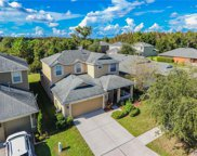 20326 Merry Oak Avenue, Tampa image