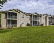 4508 Sweetwater Blvd. Unit 4508, Murrells Inlet image