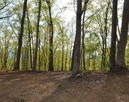 LT 23 North Ridge Trail, Brasstown image