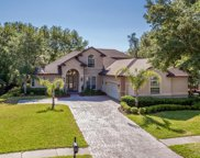 677 TREEHOUSE CIR, St Augustine image