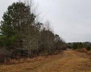 Mt. Zion Rd, Eastover image
