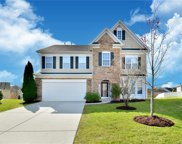 10905  Hat Creek Lane, Davidson image