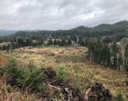 642 Fred Taylor Rd, Siletz image