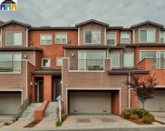 6474 Bayview Drive, Oakland image