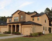 493 CRANBROOK CT, Orange Park image