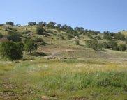 Cornflower, Squaw Valley image