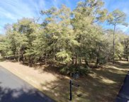 42 Sandy Ridge Loop, Pawleys Island image