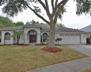 10028 Colonnade Drive, Tampa image