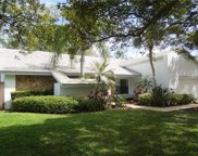3109 Masters Drive, Clearwater image