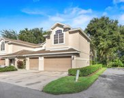 3613 Country Pointe Place, Palm Harbor image