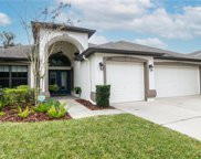 15721 Starling Water Drive, Lithia image