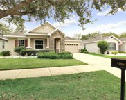 15854 Starling Water Drive, Lithia image