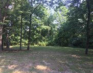 16937 Lewis Spring Farms, Chesterfield image