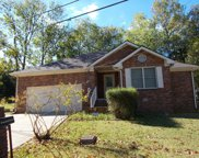 2925 Wilford Pack Dr, Antioch image