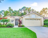 12732 Glen Hollow Dr, Bonita Springs image