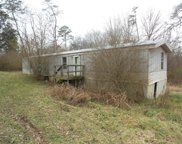 8917 Curtis Rd, Strawberry Plains image