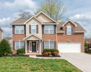 3336 Grassy Pointe Lane, Knoxville image