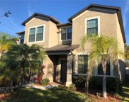 11618 Palmetto Pine Street, Riverview image