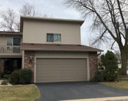 19W203 Theresa Lane, Oak Brook image
