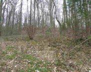 Lot 80 Muscadine Ct., Sevierville image