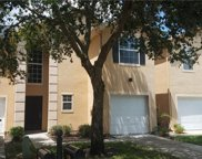 6228 Clifton Palms Drive, Tampa image