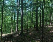 L 48C Ross Ridge, Blairsville image