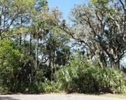 310 Deer Pointe  Court, Fripp Island image