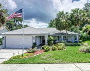 1701 Highland Club Lane, Palm Harbor image