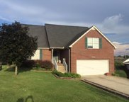 2402 Audelia Way, Spring Hill image