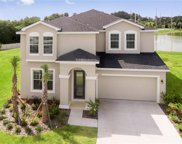 12250 Blue Pacific Drive, Riverview image