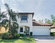 4423 Raffia Palm Cir, Naples image