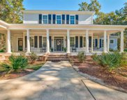 1262 Wallace Pate Dr., Georgetown image