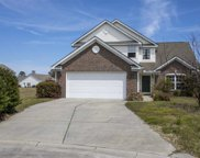 419 Wellman Court, Conway image