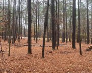 Lot 77 Indian Road, Lincolnton image