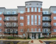 800 Weidner Road Unit 303, Buffalo Grove image