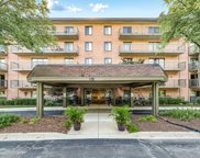 6443 Clarendon Hills Road Unit 304F, Willowbrook image