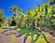 LOVELL SUBD. RD, PAHOA image