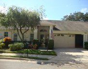 3536 Cayman, Palm Harbor image