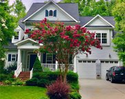 13124 Appolinaire  Drive, Davidson image