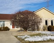 17750 Iroquois Trace, Tinley Park image