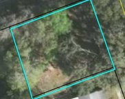 1701 IDLEWILD AVE, Green Cove Springs image