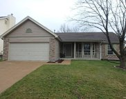 2922 Willow Mound, Florissant image