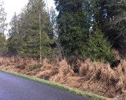 94 xxx 163rd Ave SE, Snohomish image