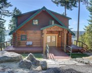 12508 Cole Point Dr, Anderson Island image