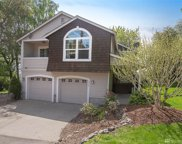 1213 S Concord St, Seattle image