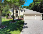 540 Sand Wedge Loop, Apopka image