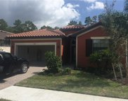 4248 Raffia Palm Cir, Naples image