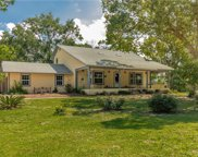 1726 Crown Point Woods Circle, Ocoee image