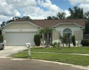 11219 Thicket Court, Tampa image